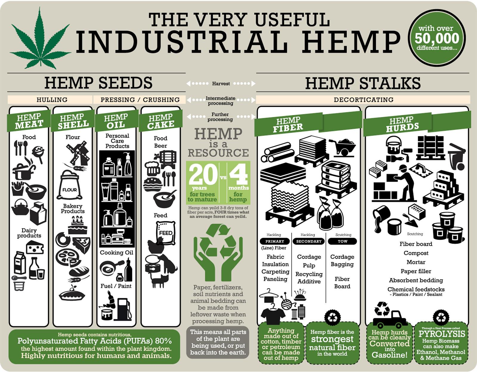 hemp-products-infographic